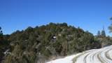 34100 Turkey Creek Lane - Photo 1