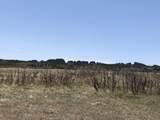 Lot 31 Majors Ranch - Photo 14