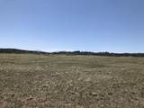 Lot 31 Majors Ranch - Photo 16