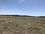 Lot 31 Majors Ranch - Photo 17