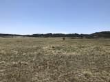 Lot 31 Majors Ranch - Photo 18