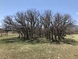 Lot 31 Majors Ranch - Photo 4