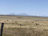 Lot 50 Turkey Ridge Ranch - Photo 2