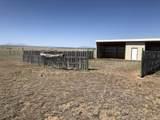 Lot 50 Turkey Ridge Ranch - Photo 6