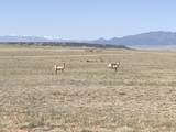 Lot 50 Turkey Ridge Ranch - Photo 7