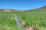 Thorne Ranch - Photo 20