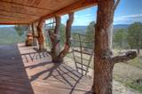 31300 Timber Canyon Rd - Photo 4