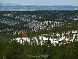 33022 Fishers Peak Pkwy - Photo 2