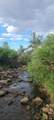 TBD 64 Acres With River - Photo 1
