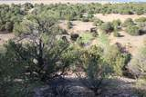 TBD 64 Acres With River - Photo 10