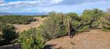 TBD 64 Acres With River - Photo 11