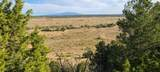 TBD 64 Acres With River - Photo 14
