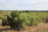 TBD 64 Acres With River - Photo 18