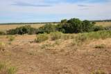 TBD 64 Acres With River - Photo 19