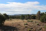 TBD 64 Acres With River - Photo 20