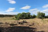 TBD 64 Acres With River - Photo 21