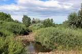 TBD 64 Acres With River - Photo 22