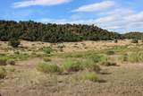 TBD 64 Acres With River - Photo 26