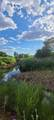 TBD 64 Acres With River - Photo 29
