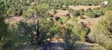 TBD 64 Acres With River - Photo 8