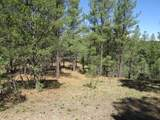 36515 Alpine Meadows Drive - Photo 4