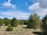 TBD Navajo Ranch Resorts Filing #3 - Photo 3