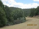 32051 Oso Canyon Rd - Photo 10
