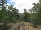 32051 Oso Canyon Rd - Photo 12