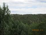 32051 Oso Canyon Rd - Photo 14