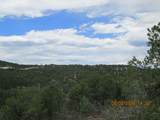 32051 Oso Canyon Rd - Photo 2