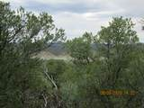 32051 Oso Canyon Rd - Photo 5