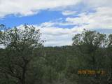 32051 Oso Canyon Rd - Photo 6