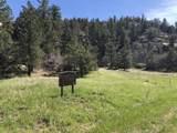 54&55 Cimarron Ranches Phase 1 - Photo 4