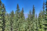 Lot 9 Timber Ridge At Cordova Pass - Photo 23