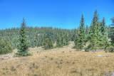 Lot 8 Timber Ridge At Cordova Pass - Photo 29