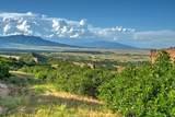 LOT 5 Piney Ridge Ranch - Photo 15