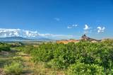 LOT 5 Piney Ridge Ranch - Photo 16