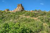 LOT 5 Piney Ridge Ranch - Photo 7