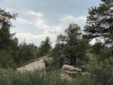 TBD Rancho La Garita Lot 137 - Photo 8