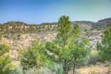 10491 Primero Ranch Rd - Photo 52
