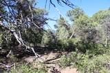 TBD Fisher Peak Ranch Lot M5 - Photo 13