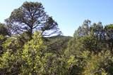 TBD Fisher Peak Ranch Lot M5 - Photo 14