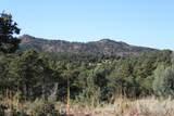 TBD Fisher Peak Ranch Lot M5 - Photo 16
