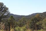 TBD Fisher Peak Ranch Lot M5 - Photo 17