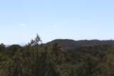 TBD Fisher Peak Ranch Lot M5 - Photo 20