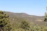 TBD Fisher Peak Ranch Lot M5 - Photo 30