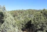 TBD Fisher Peak Ranch Lot M5 - Photo 34