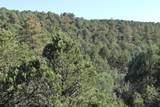 TBD Fisher Peak Ranch Lot M5 - Photo 36