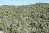 TBD Fisher Peak Ranch Lot M5 - Photo 37