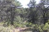 TBD Fisher Peak Ranch Lot M5 - Photo 4